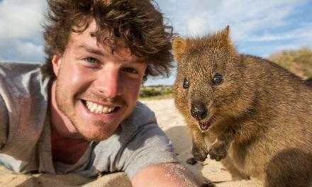 Tento kluk se již několik let živí focením selfie se zvířaty