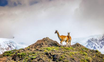 Jak jsme zdolali trek po pohoří Huayhuash v Peru