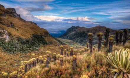Vyrazil jsem křížem krážem přírodou a dálnicemi Kolumbie