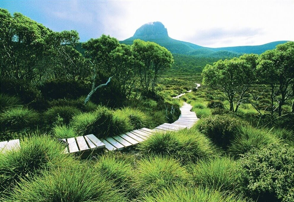 overland track austrálie