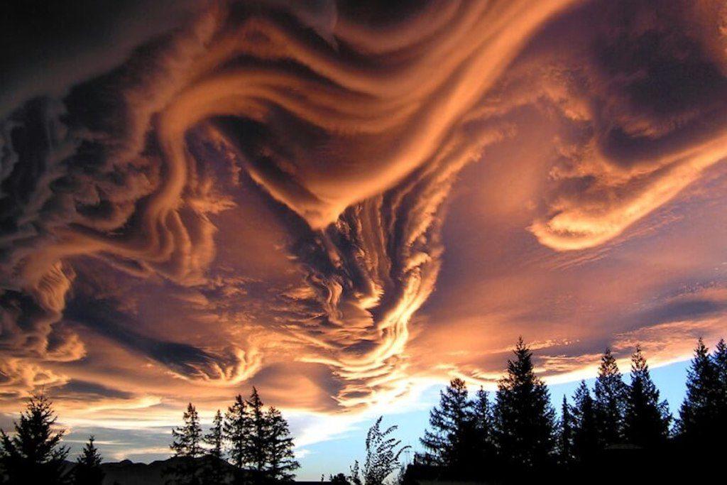 15 neuvěřitelných optických iluzí, které vytvořila matka příroda5 minut čtení