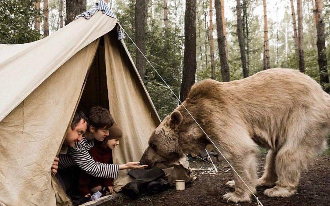 15 neuvěřitelných setkání lidí a divokých zvířat