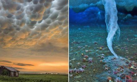 11 nejbizarnějších přírodních jevů, které se doopravdy dějí