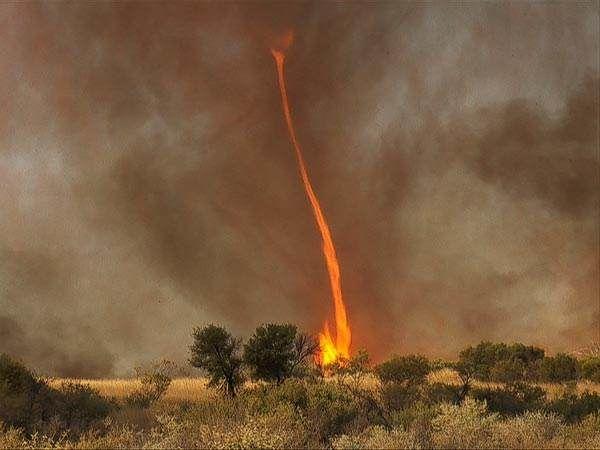 ohnive tornado