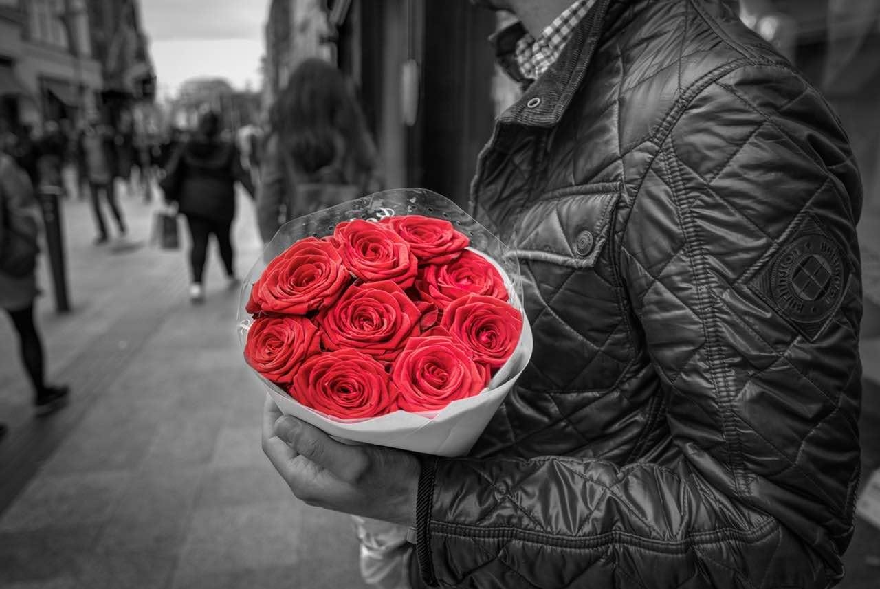 bouquet-roses-colorful-floral-428611 (1)