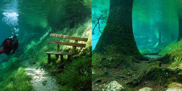 Neskutečné! Tento park v Rakousku se každé jaro promění v průzračné jezero