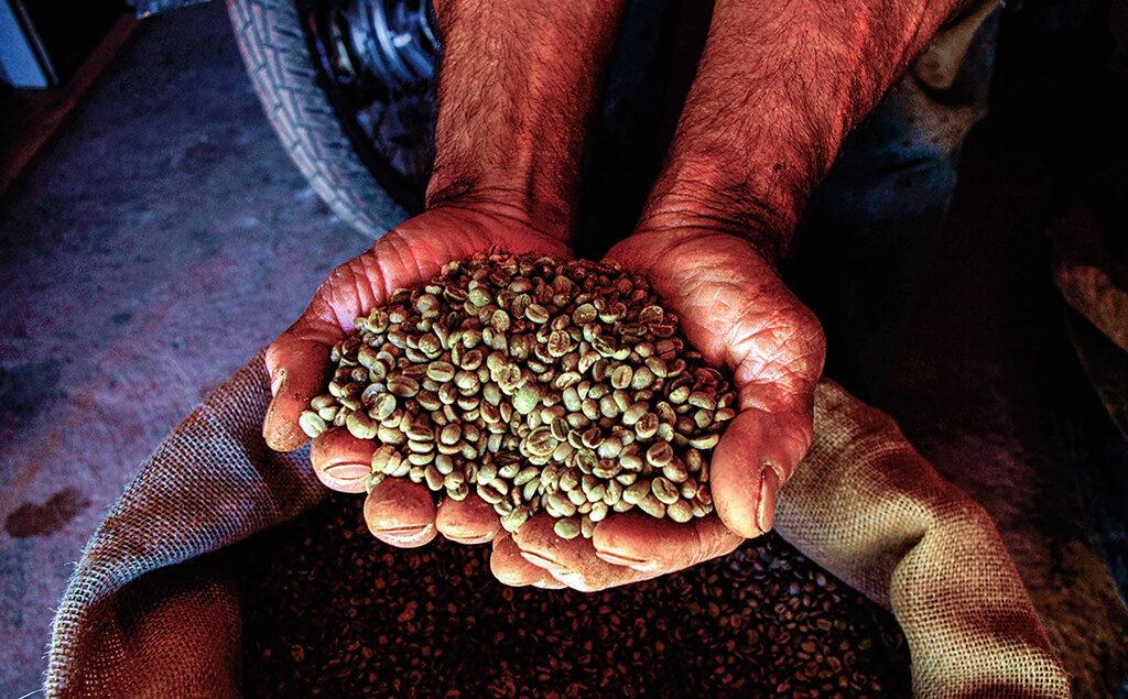 Pěstování kávy v Brazílii je ve skutečnosti pořádná dřina