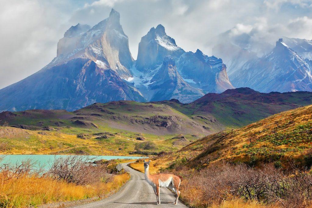 Krásná a divoká Patagonie je snem každého opravdového cestovatele13 minut čtení