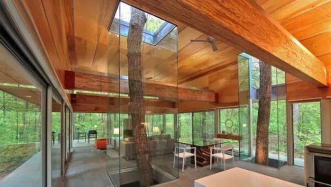 stromy architektura