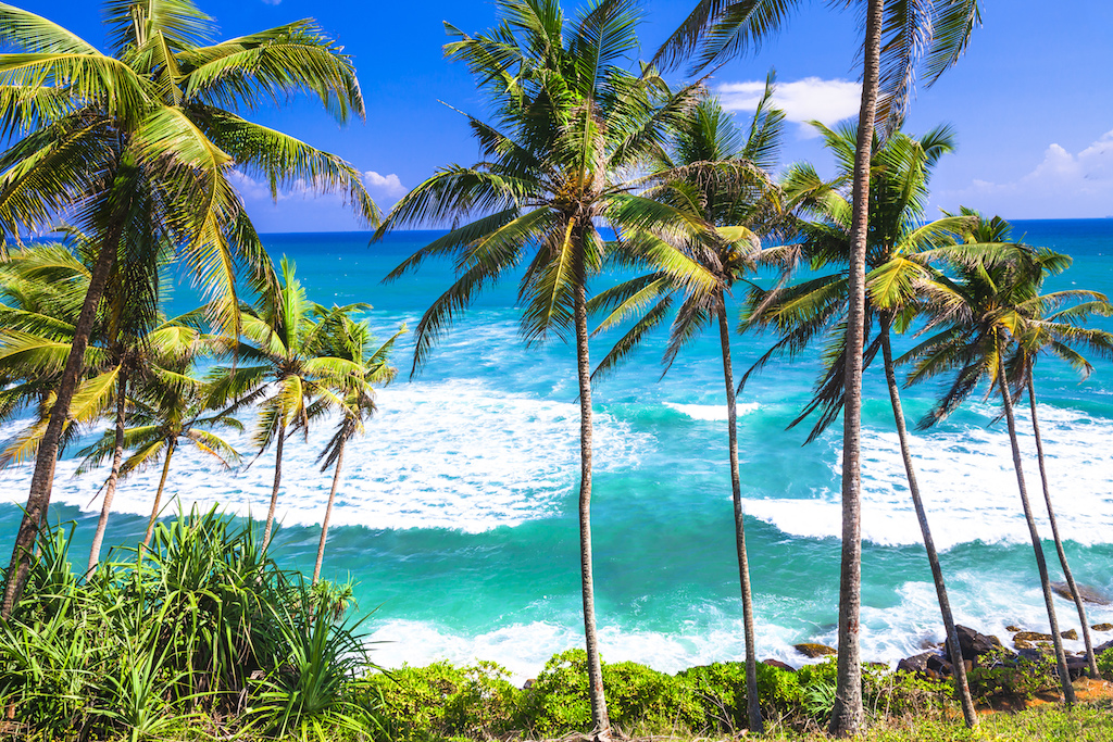 Plaze na Sri Lance