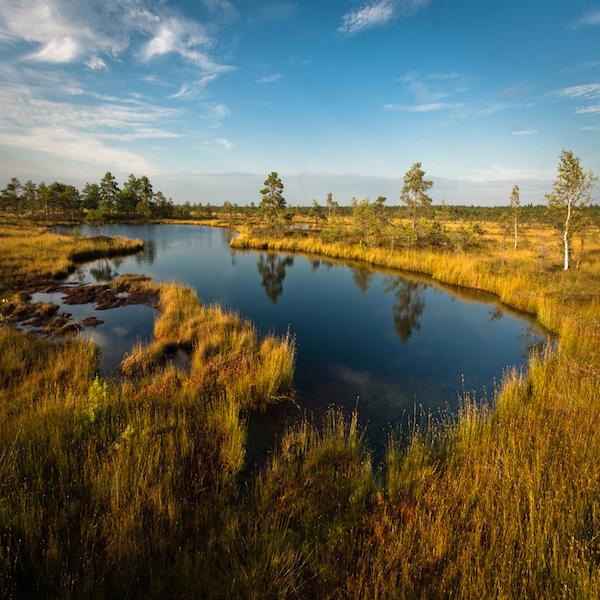 Národní park Soomaa
