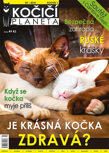 časopis Koktejl