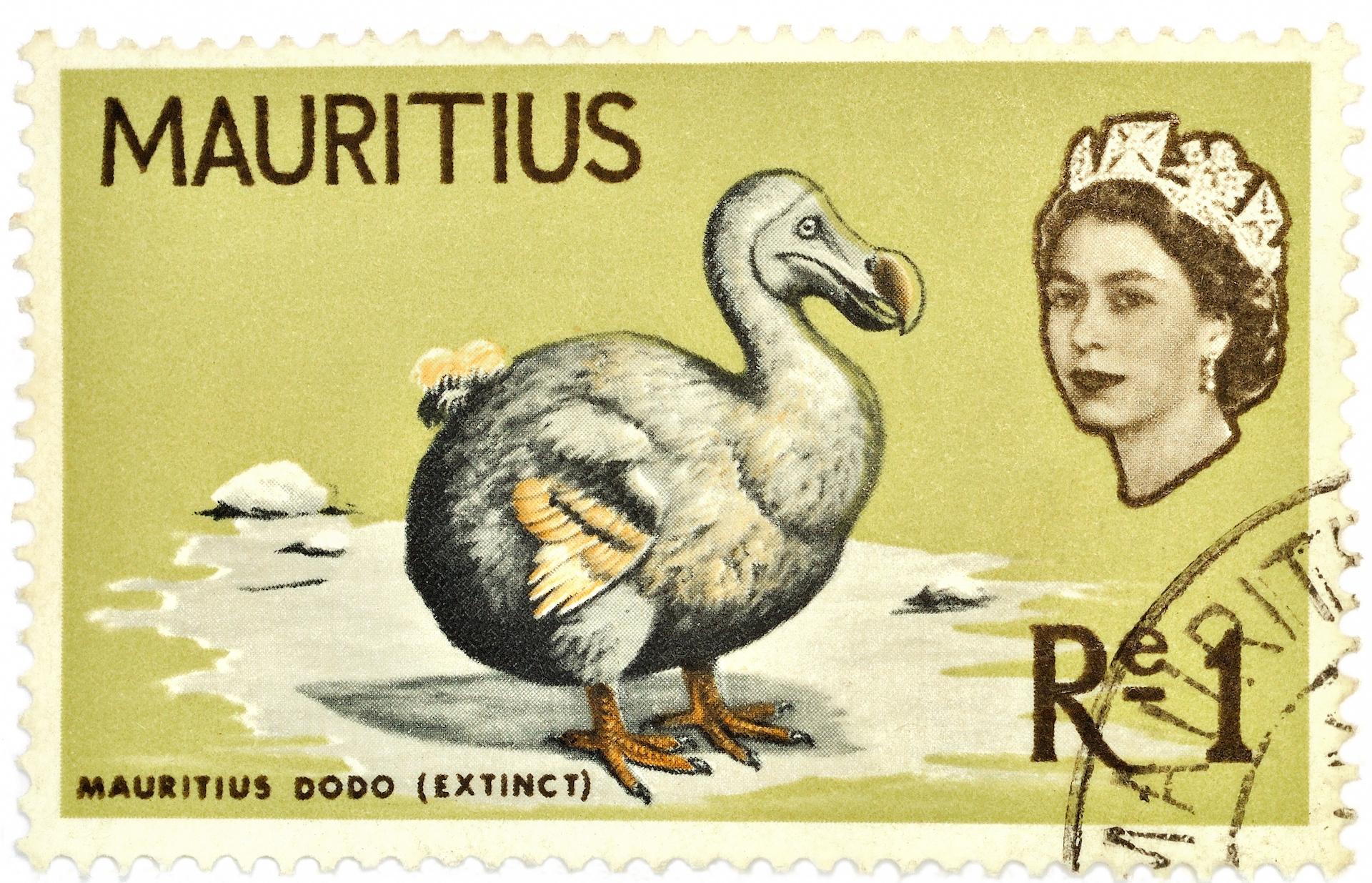 dodo známka
