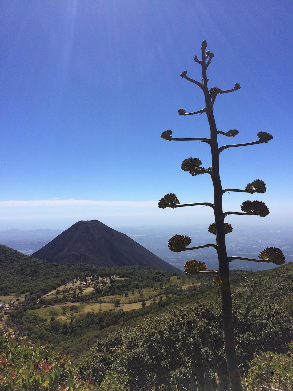 vulkán Izalco