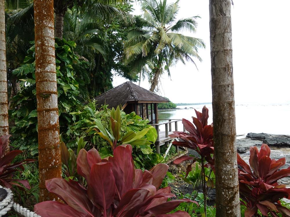 Radka-Samoa