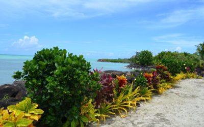 Samoa – květinový ostrov