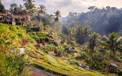 Odvrácená strana Bali, aneb co vám průvodce rozhodně neprozradí