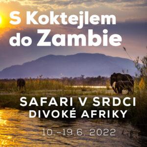 Zambie banner